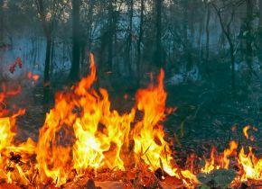 Non scherziamo con il fuoco